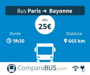 bus paris bayonne pas cher d s 10. Black Bedroom Furniture Sets. Home Design Ideas