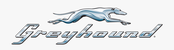 Greyhound bus company
